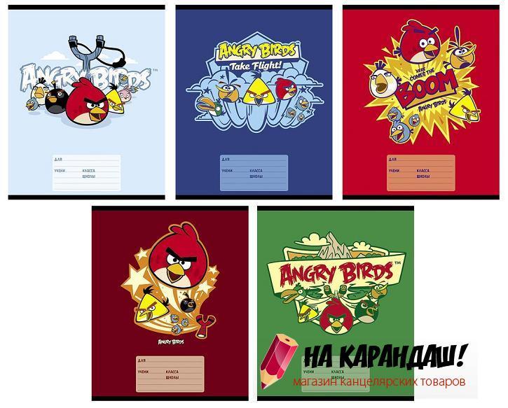 Тетрадь 12 листов косая Angry Birds 033721