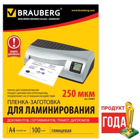 Пленка д/лам А4 250мк Brauberg 530897