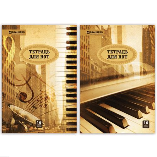 Тетради и папки для нот
