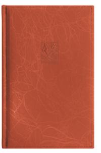 Алф кн 130*210мм 80л Scribble оранж ЕК36394