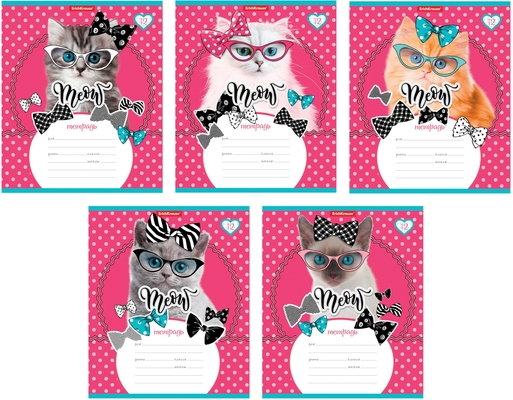 Тетрадь 12 листов клетка Cool Cat 45068