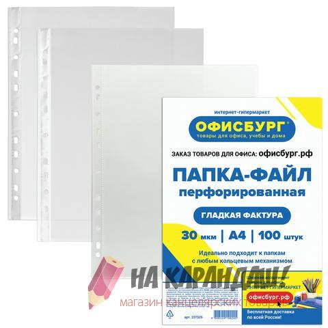 Файл A4 30мк глянц ОФИСБУРГ 227525 /100/