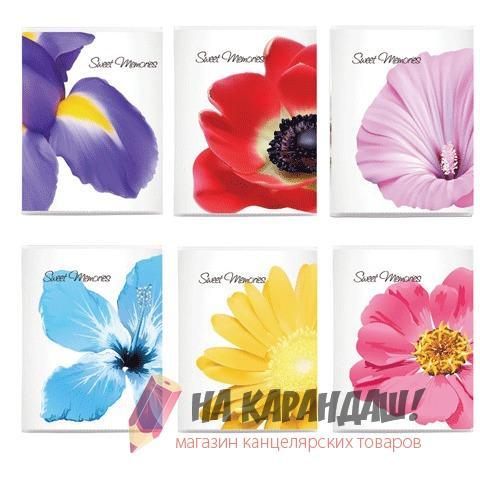 Фотоальбом 36ф 10*15см Цветы 390654