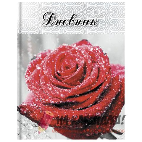 Дневник 5-11кл 48л ТП Brauberg 104969 Красная роза