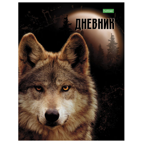 Дневник 1-11кл 40л ТП Hatber 08264 Wolf
