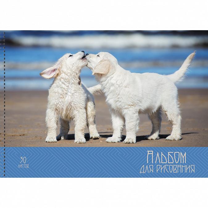 Альбом для рисования A4 30л н/сп 110гр АСЛ301910 Счастливые собачки
